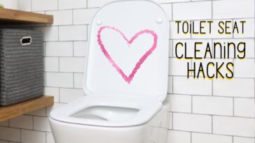 5 Ways to Clean A Toilet Seat Perfectly No More Yellow Stains