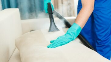 home cleaning questions quiz